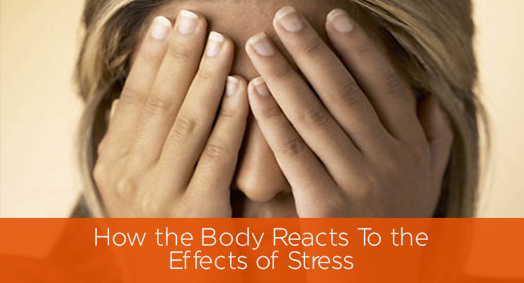 How the Body Reacts To the Effects of Stress