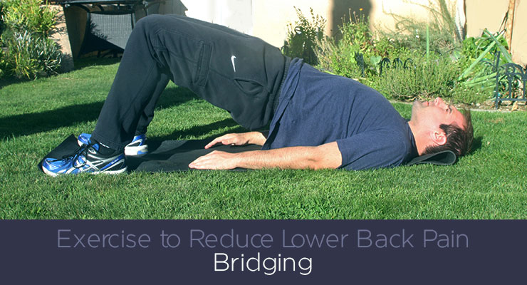 Exercise to reduce lower back pain