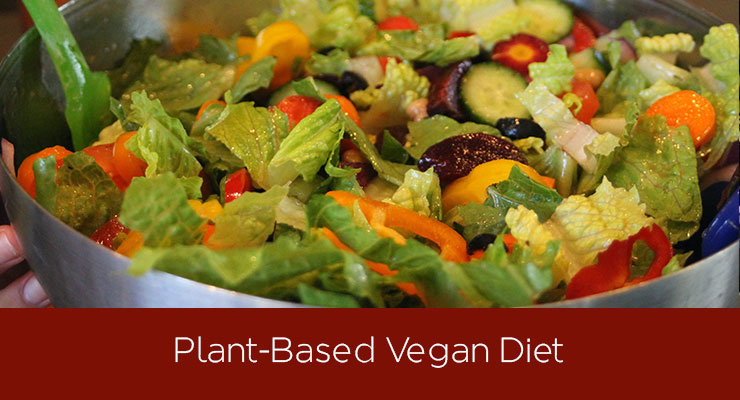 Plant Based Vegan Diet Recipes